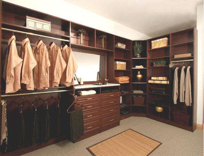 How can a Well Designed Closet Organizer Help You?